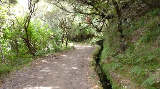 Urlaub Madeira – Tag 4 –  Wandern Rabaçal/Risco/25 Fontes
